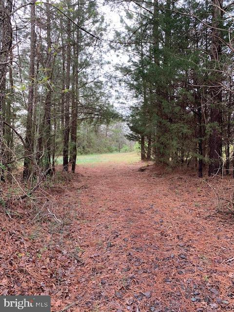 Land for Sale at Lignum, Virginia 22726 United States