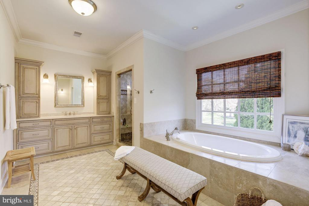 Master Bathroom - 9720 ARNON CHAPEL RD, GREAT FALLS