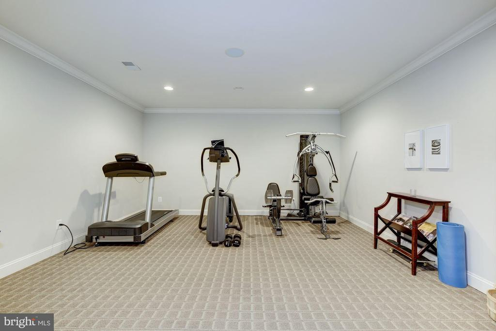 Exercise Room - 9720 ARNON CHAPEL RD, GREAT FALLS