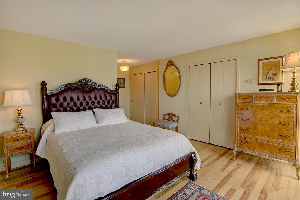 Bright & spacious Master with ample closet space - 520 N ST SW #S621, WASHINGTON