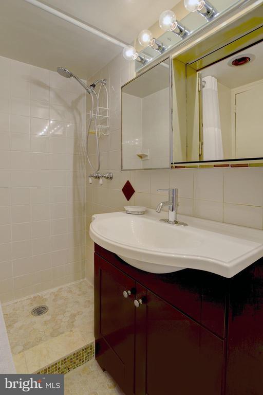 Another beautiful bathroom - 520 N ST SW #S621, WASHINGTON