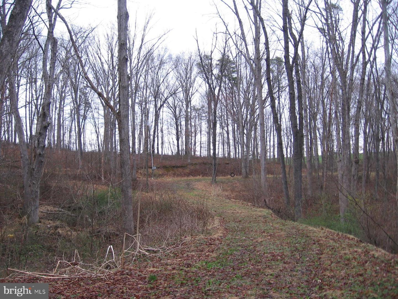 Land for Sale at Salem View Lane Lot 16 Berkeley Springs, West Virginia 25411 United States