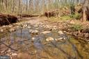 The last natural spring-fed Trout Stream in N. VA - 17160 SPRING CREEK LN, LEESBURG