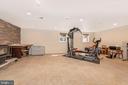 Lower level family room. - 13712 PRYOR RD, THURMONT