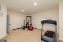 Finished Basement Gym or Playroom - 24436 PERMIAN CIR, ALDIE