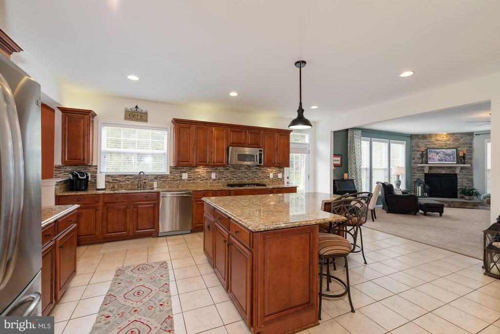 The heart of the home fits the entire family - 24436 PERMIAN CIR, ALDIE
