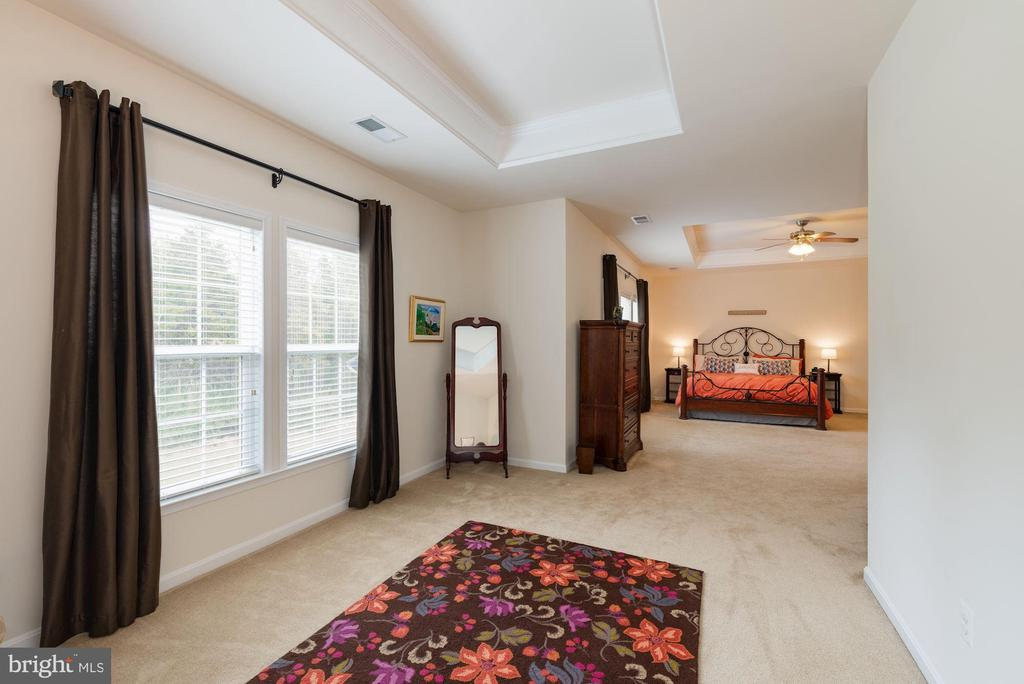 Owner's Suite with Sitting Room and Tray Ceilings - 24436 PERMIAN CIR, ALDIE
