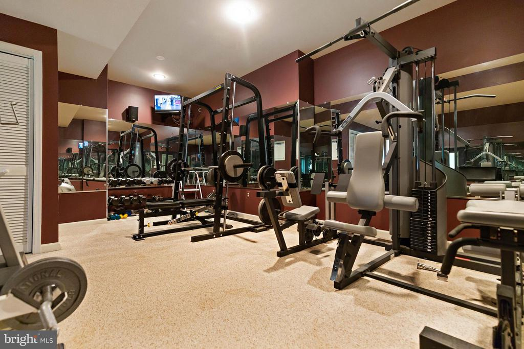 Lower Level Workout room - 44267 OLDETOWNE PL, ASHBURN