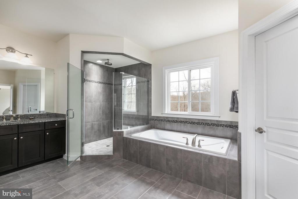 Master Bath - 15747 BASKERVILLE CT, LEESBURG