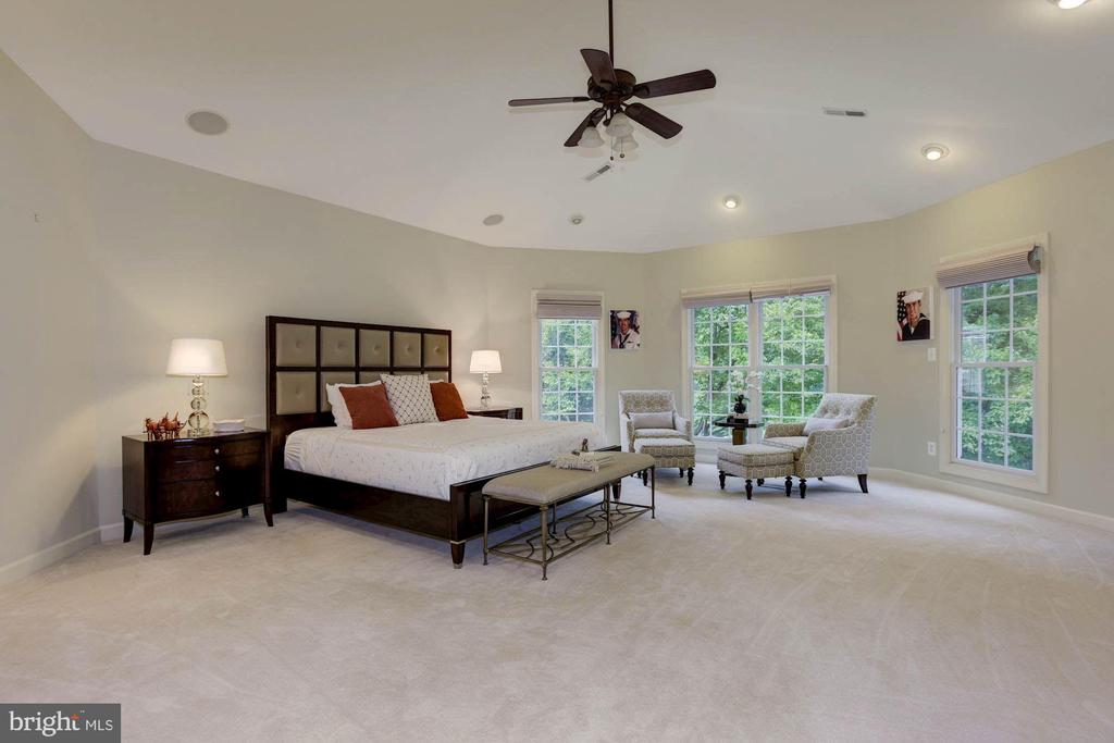 Generous-sized Master Bedroom - 20258 ISLAND VIEW CT, STERLING