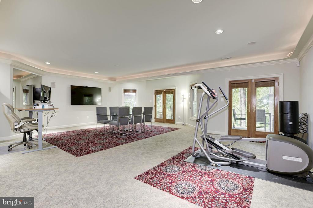 Exercise area and walk out to patio - 20258 ISLAND VIEW CT, STERLING