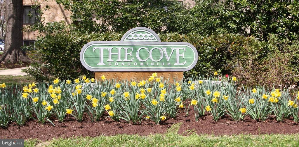 Come home to The Cove! - 10101 WINDSTREAM DR #6, COLUMBIA