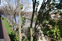 Watch the wildlife from your balcony - 10101 WINDSTREAM DR #6, COLUMBIA