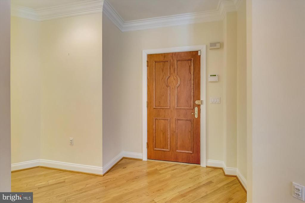Condominium door - 4600 ELM ST #R-4, CHEVY CHASE