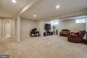 Basement rec room - 42771 CONQUEST CIR, BRAMBLETON