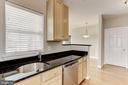 Gleaming Granite Counters - 42446 MAYFLOWER TER #301, BRAMBLETON