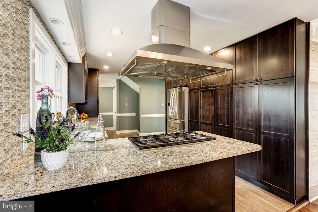 A chef's dream kitchen! - 4324 FERRY LANDING RD, ALEXANDRIA