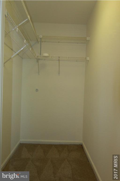 Walk in closet - 1123 NE HUNTMASTER TER NE #102, LEESBURG