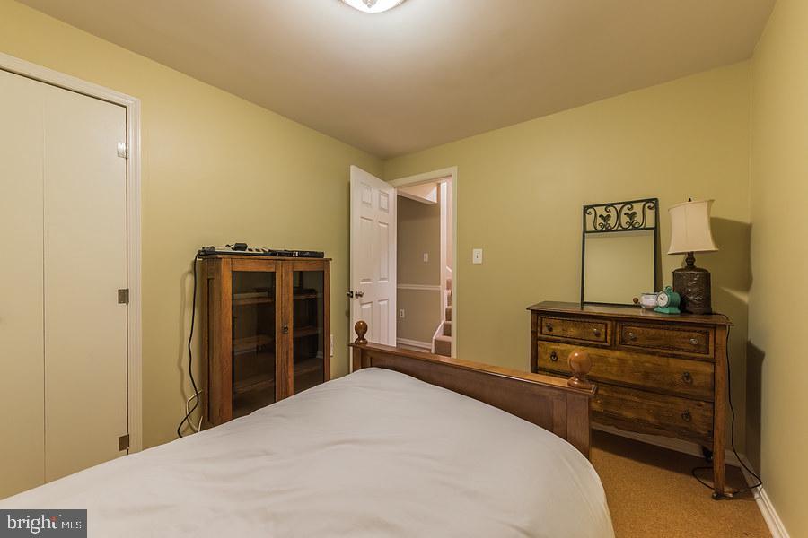 Lower level bedroom or den - 2552-C S ARLINGTON MILL DR #2, ARLINGTON