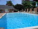 Community Pool - 2552-C S ARLINGTON MILL DR #2, ARLINGTON