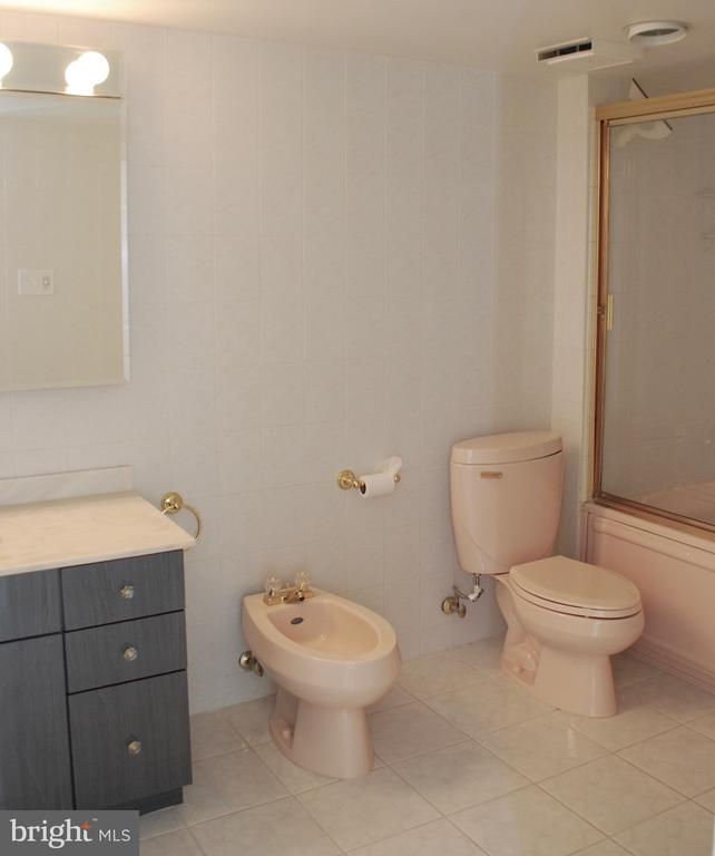 Large Bathroom - 1800 OLD MEADOW RD #606, MCLEAN