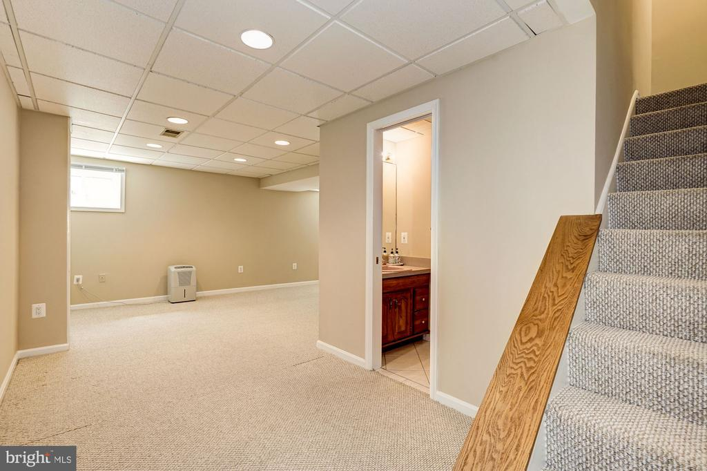 Lower level finished bsmt playroom/2nd Family Rm - 8515 ORDINARY WAY, ANNANDALE