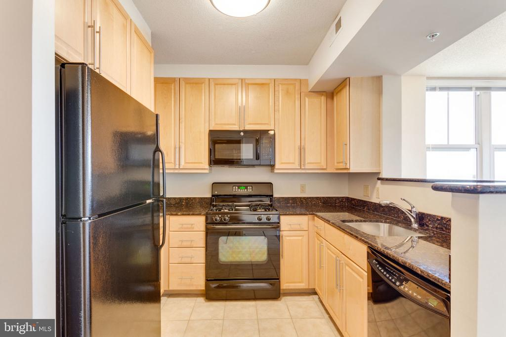 Lots of cabinets & granite counter top space - 11760 SUNRISE VALLEY DR #813, RESTON