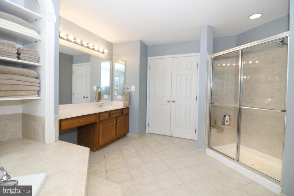 Master Bathroom - 43308 CLARECASTLE DR, CHANTILLY