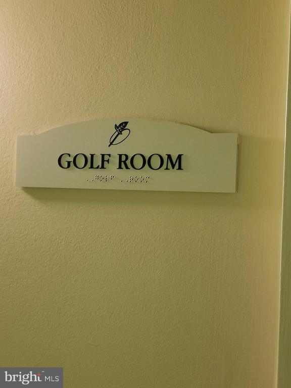 Golf simulator - 2791 CENTERBORO DR #185, VIENNA