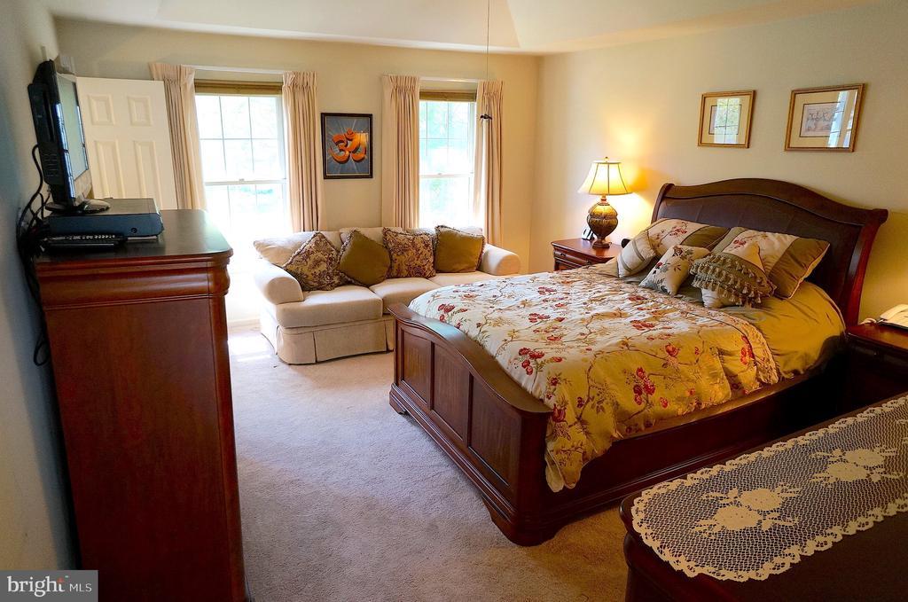 Owner's Bedroom - 11 WESTBROOK LN, STAFFORD