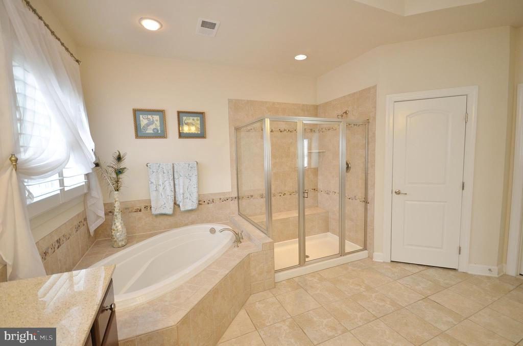 Relaxing Soaking Tub & Separate Shower - 25035 AVONLEA DR, CHANTILLY