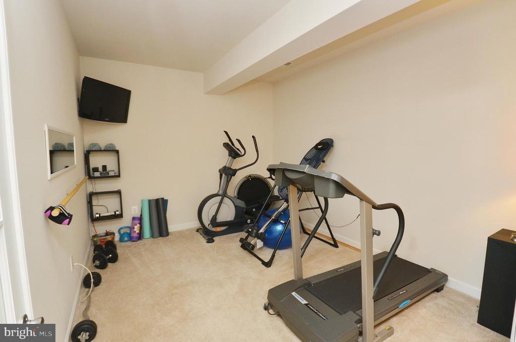 Great Den, Gym or Playroom - 25035 AVONLEA DR, CHANTILLY