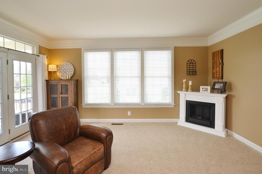 Family Room - 25035 AVONLEA DR, CHANTILLY