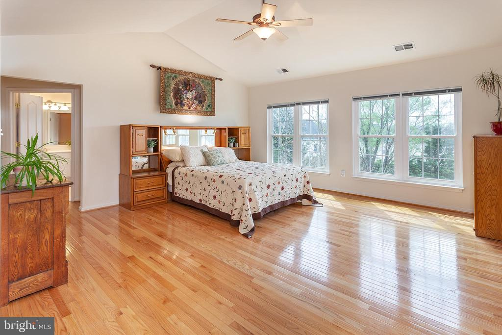 Master Suite... enjoy the vaulted ceiling! - 20377 WATER VALLEY CT, STERLING
