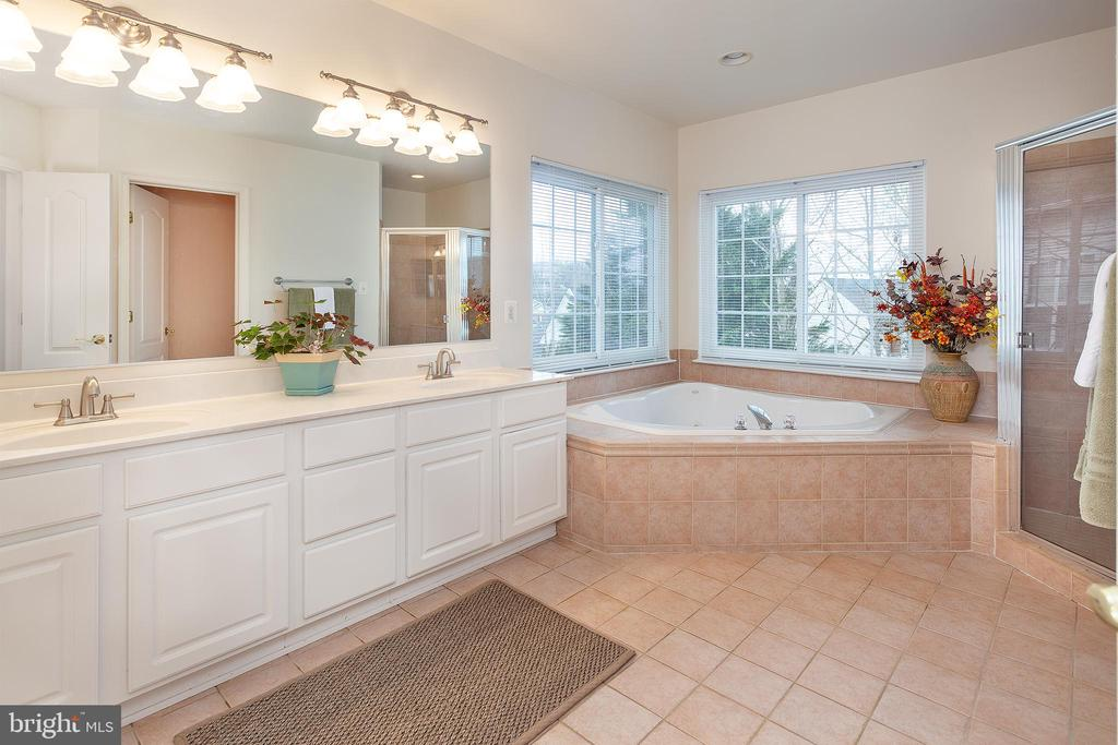 Master Bath w/ tons of natural light! - 20377 WATER VALLEY CT, STERLING