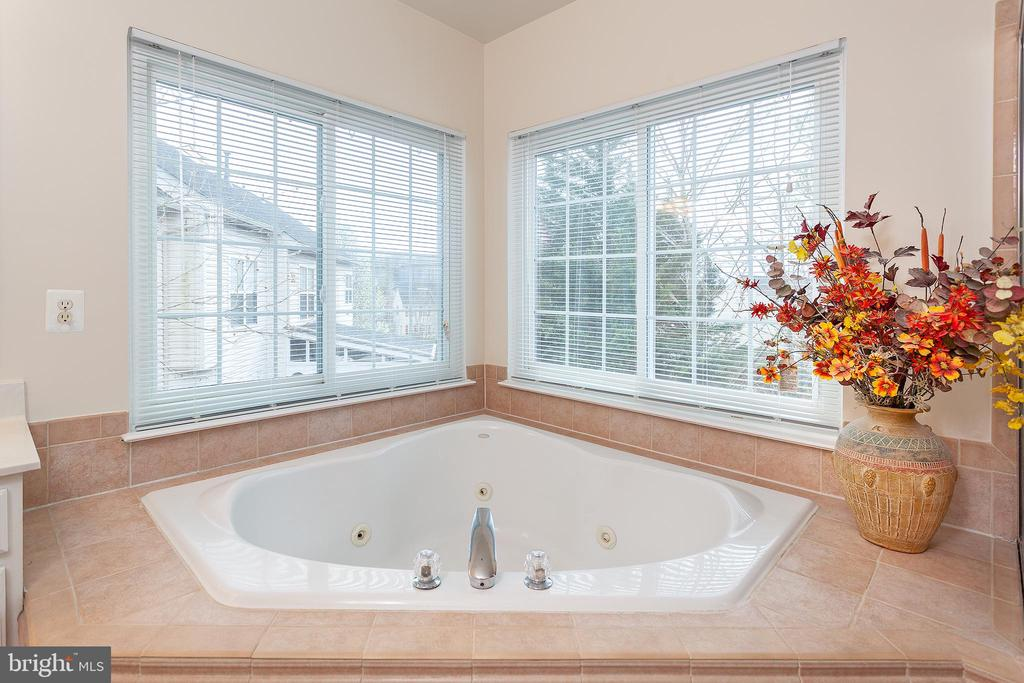 Large jacuzzi tub in master bath - 20377 WATER VALLEY CT, STERLING
