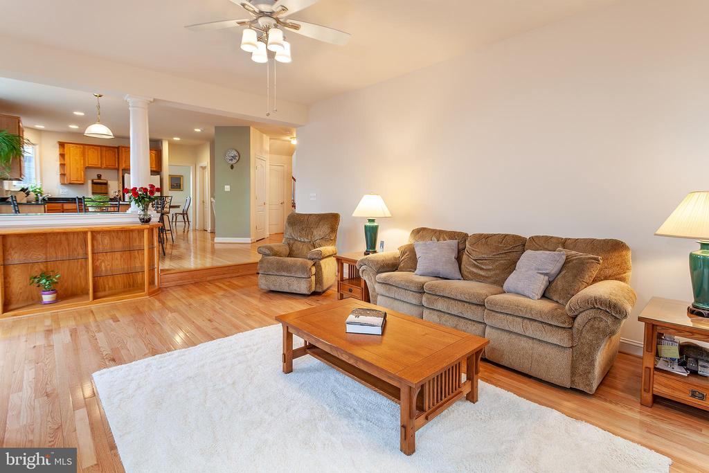 Large Family Room w/built-in shelving! - 20377 WATER VALLEY CT, STERLING