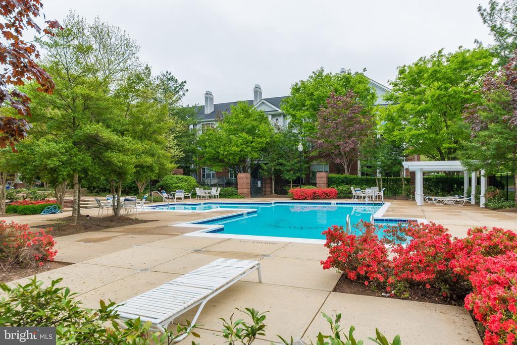 Outdoor pool at Club House - 20281 BEECHWOOD TER #302, ASHBURN