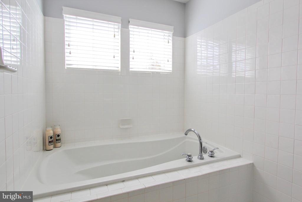 Owner's soaking tub - 20413 BOWFONDS ST, ASHBURN