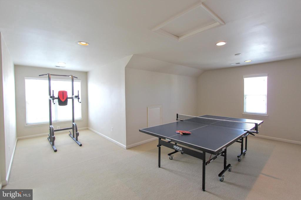 Huge loft level - 20413 BOWFONDS ST, ASHBURN