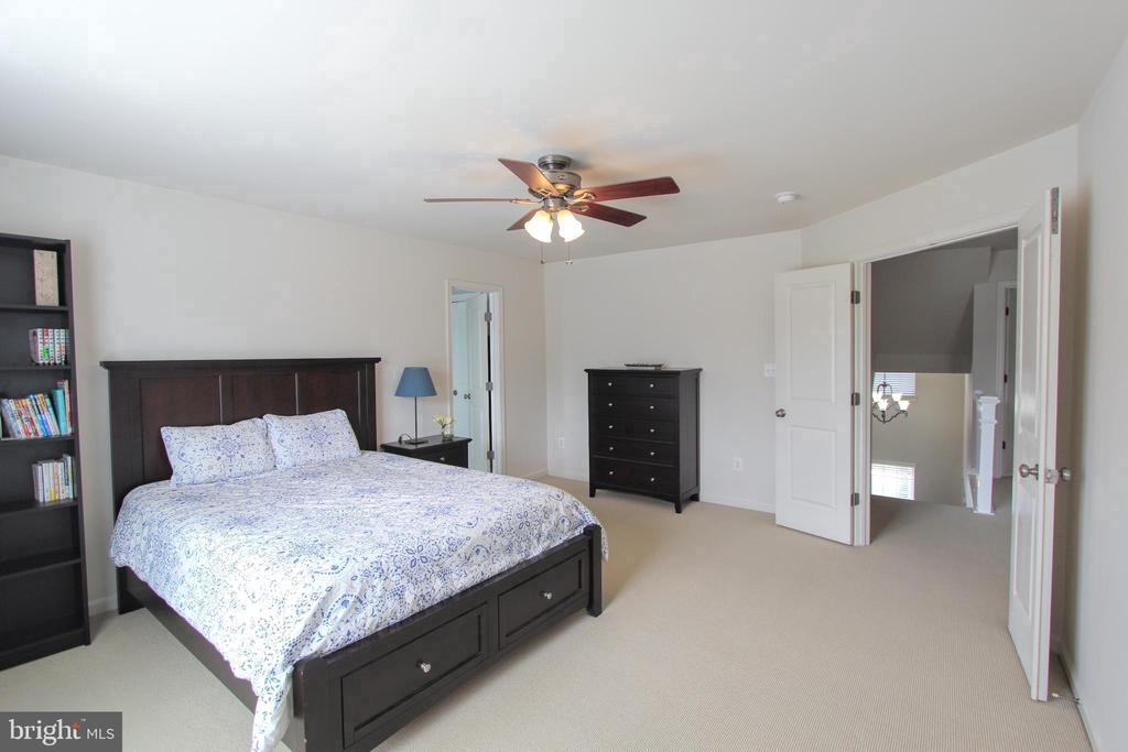 Owner's suite - 20413 BOWFONDS ST, ASHBURN