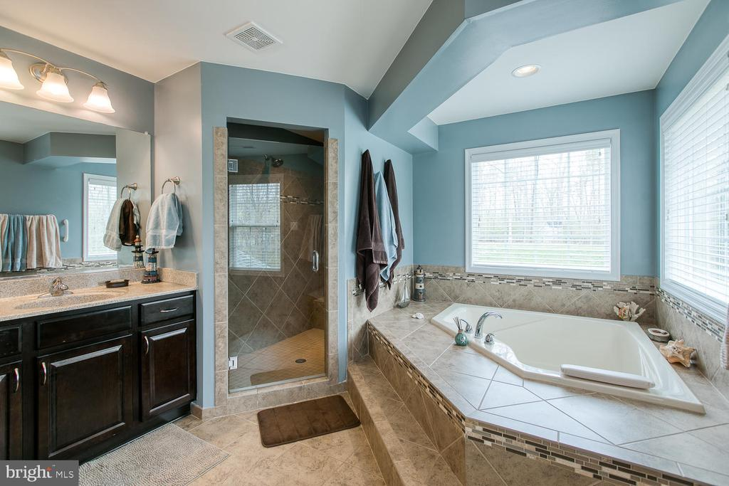 Master Bath-soaker tub-walk in shower - 145 DONOVAN LN, STAFFORD