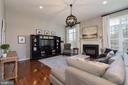 Stunning family room w/ fireplace/custom lighting - 23013 OLYMPIA DR, ASHBURN