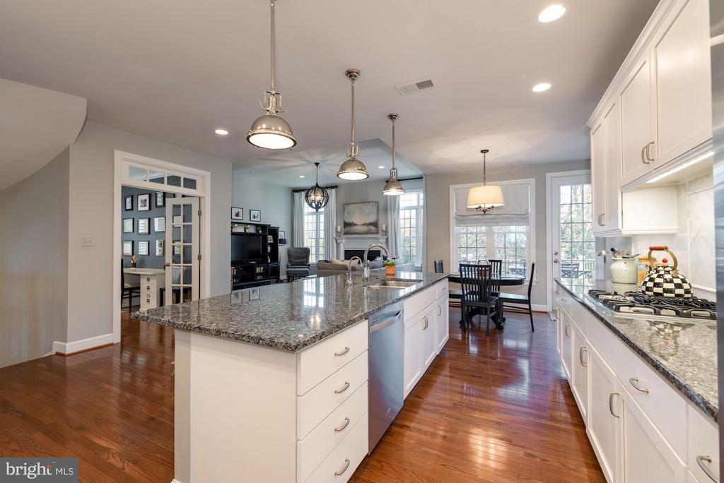 Kitchen with upgraded cabinets/granite/lighting - 23013 OLYMPIA DR, ASHBURN