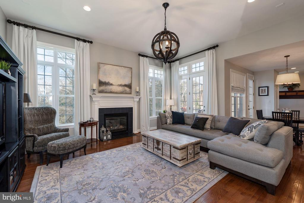 Light-filled family room overlooking private yard - 23013 OLYMPIA DR, ASHBURN