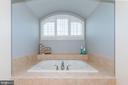 Spa-like soaking tub - 23013 OLYMPIA DR, ASHBURN