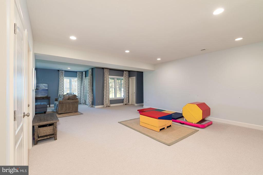 Recreation room - 23013 OLYMPIA DR, ASHBURN