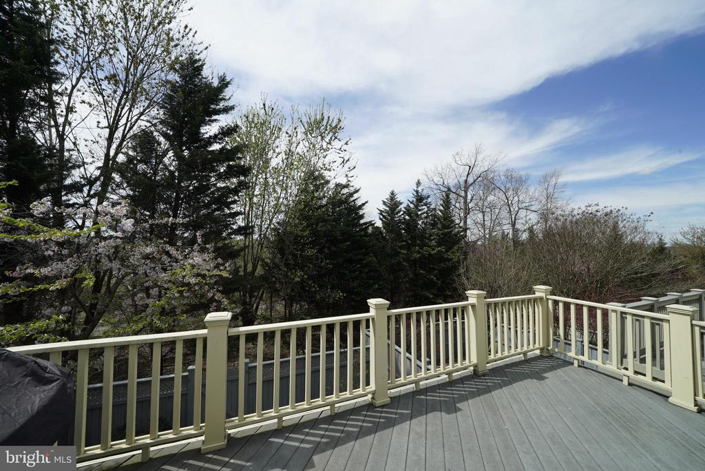 DECK 2 - BACKYARD VIEW - 12224 DORRANCE CT, RESTON