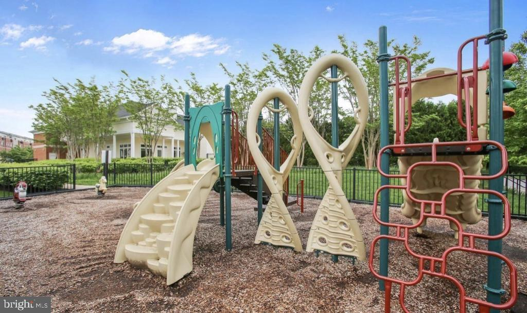 Jogging & walking paths, playgrounds and dog parks - 43545 MAHALA ST, LEESBURG