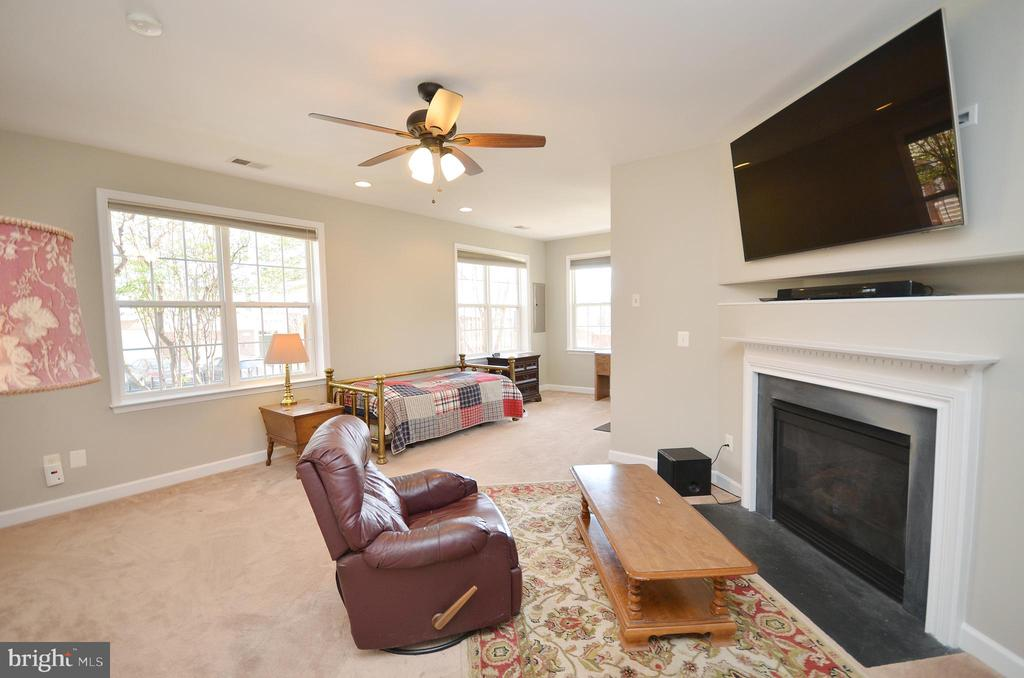Rec room with gas FP, full bath, walk out level - 19082 PILEATED TER, LEESBURG
